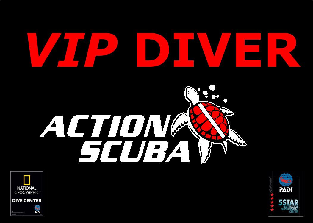 VIP Diver Private Scuba Divnig Lessons in Montreal