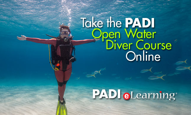 PADI Open Water Diver Course online e-learning