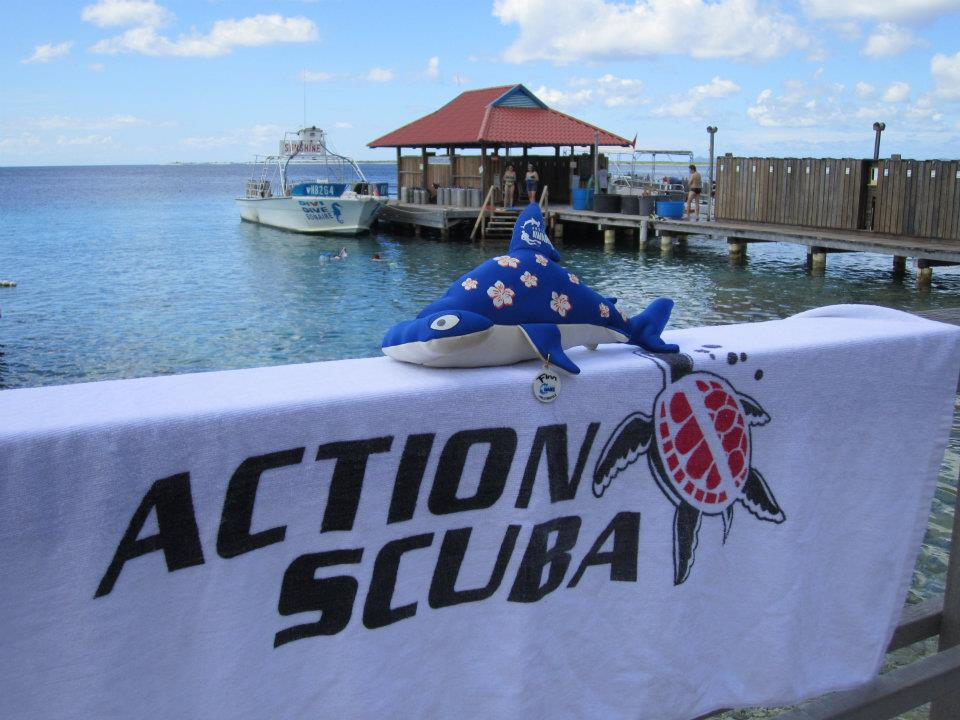 Finn Project Aware and Action Scuba Montreal scuba diving